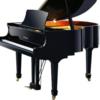 SD Piano Tuning and Repair